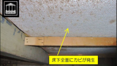 床下のガビ発生