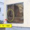 モルタル外壁の柱腐朽