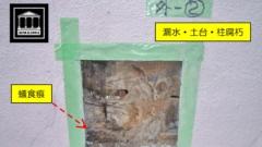外壁 漏水 蟻 腐食
